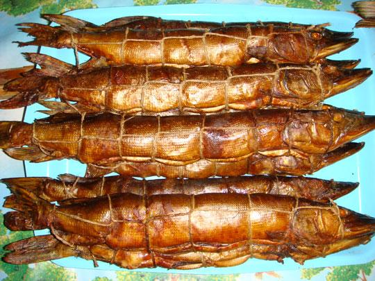 рецепты копчения мяса сала рыбы