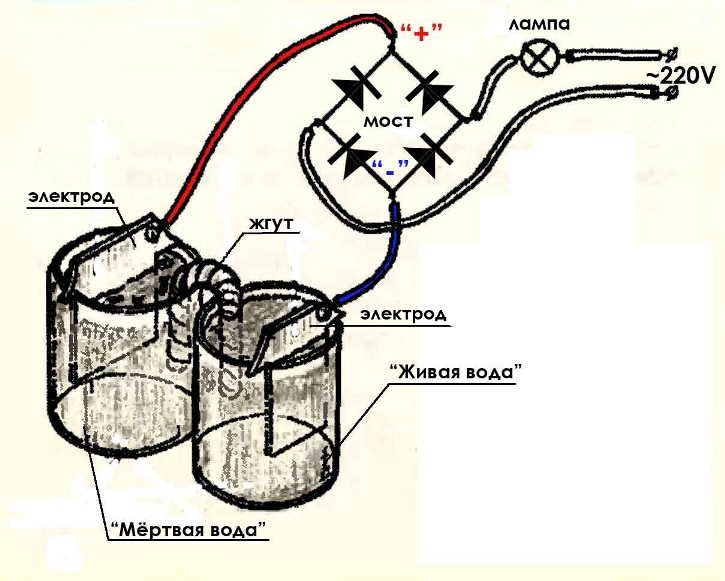 Электролизер для живой воды своими руками