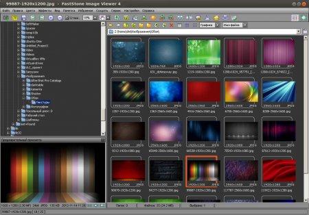 Внешний вид программы Faststone Image