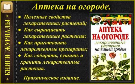 Аптеа на огороде_лекарственные растения на грядке