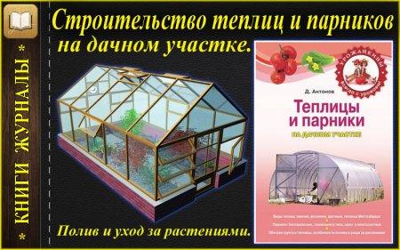 Теплицы и парники на дачном участке, полив и уход за растениями