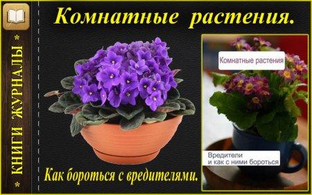 Вредители, болезни комнатных растений и как с этим бороться