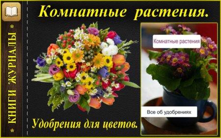 Все об удобрениях для комнатных растений