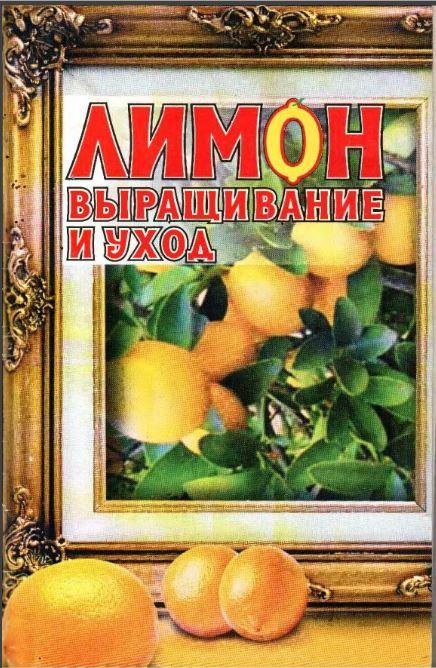 Лимон_Выращивание и уход