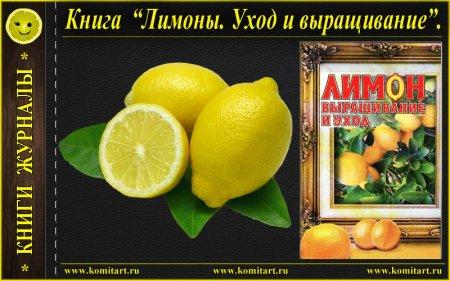 Лимон_Выращивание и уход_книга