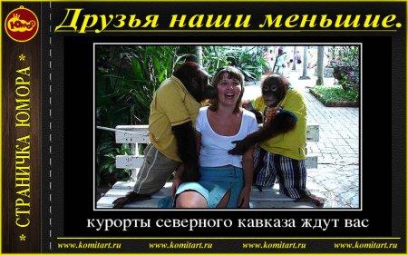 Демотиваторы_Друзья наши меньшие
