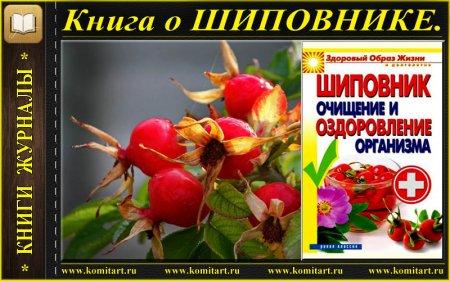 Книга о Шиповнике
